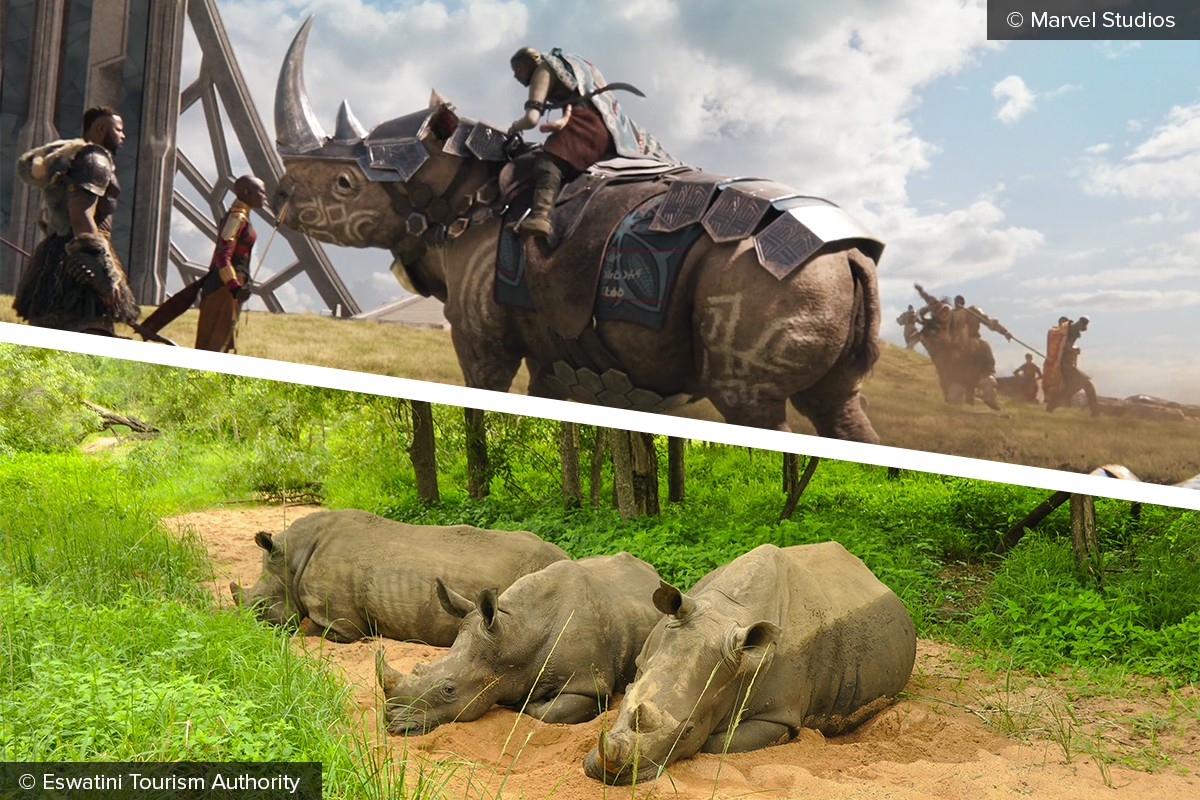 Wakanda Vs Eswatini How Africa S Two New Countries